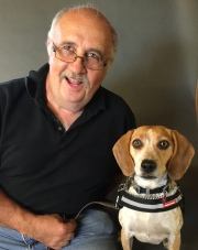 o'reily beagle
