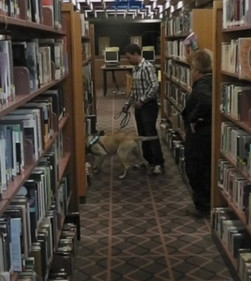 Tule and Handler Branko working a library Toronto Canada